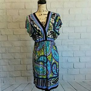 Cute Snap summer dress in excellent condition